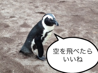 ペンギンだけど…